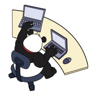 smart_panda_laptop