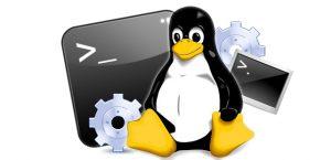 Smart Panda - Linux Console